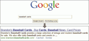 Screenshot showing a user query in the Google search box